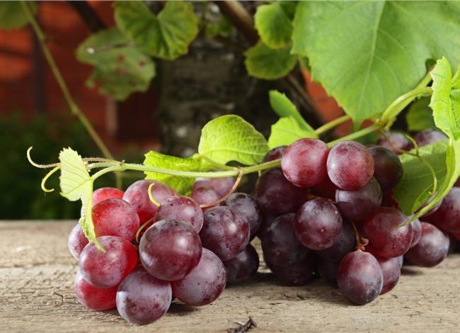 Το κόκκινο χρώμα στις τροφές συνδέεται με την υγεία και τη νεότητα