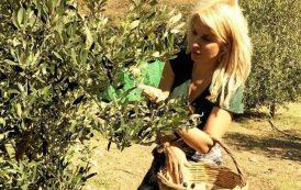Φωτογραφίες: Η Ελένη Μενεγάκη μαζεύει ελιές!